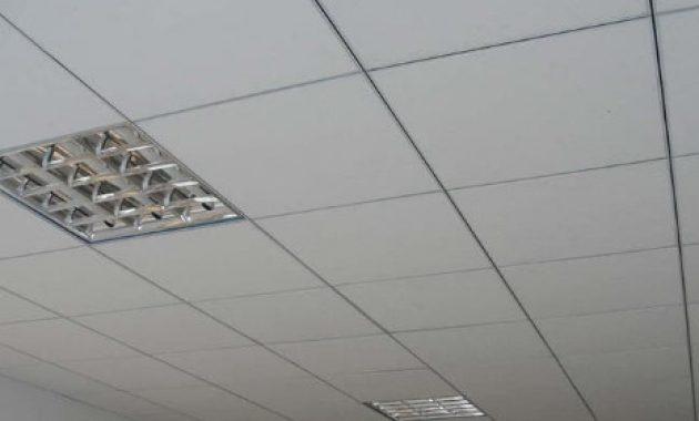 plafon akustik kantoran